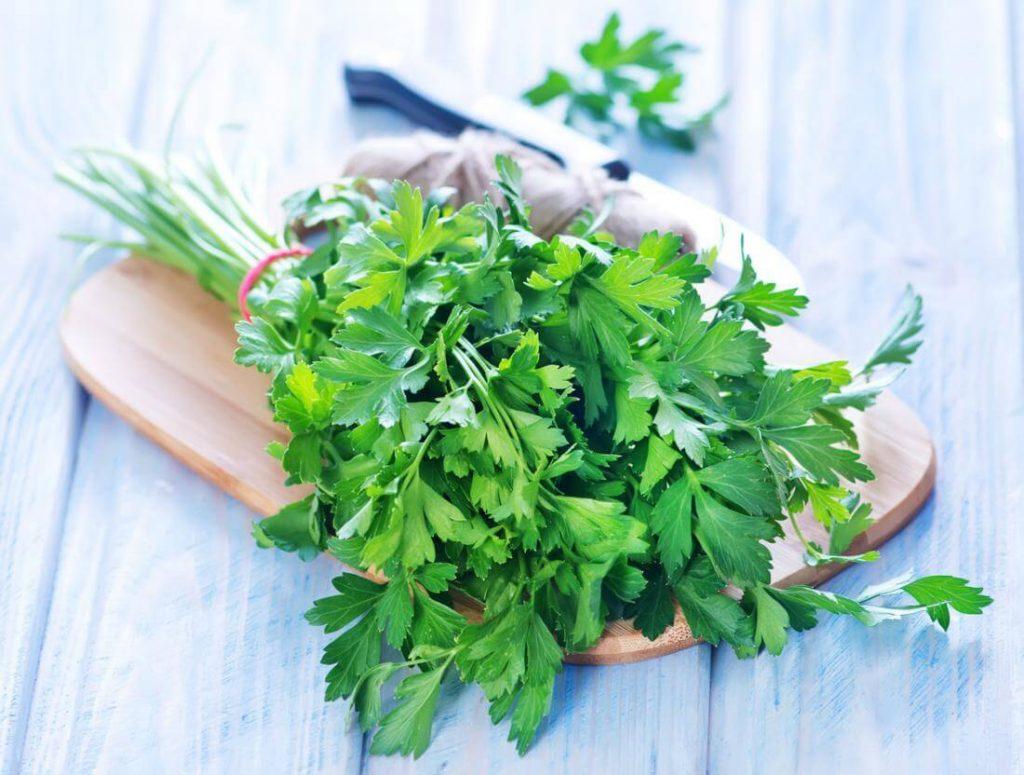 Sağlıklı Kilo Verdiren Bitkiler Nelerdir?