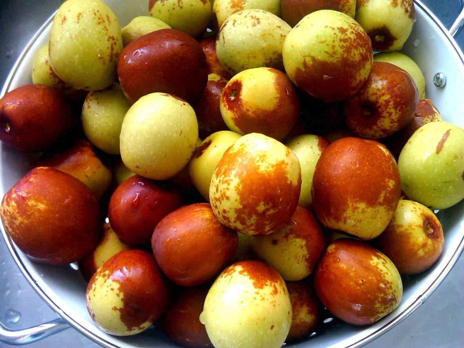 hünnap meyvesi faydaları