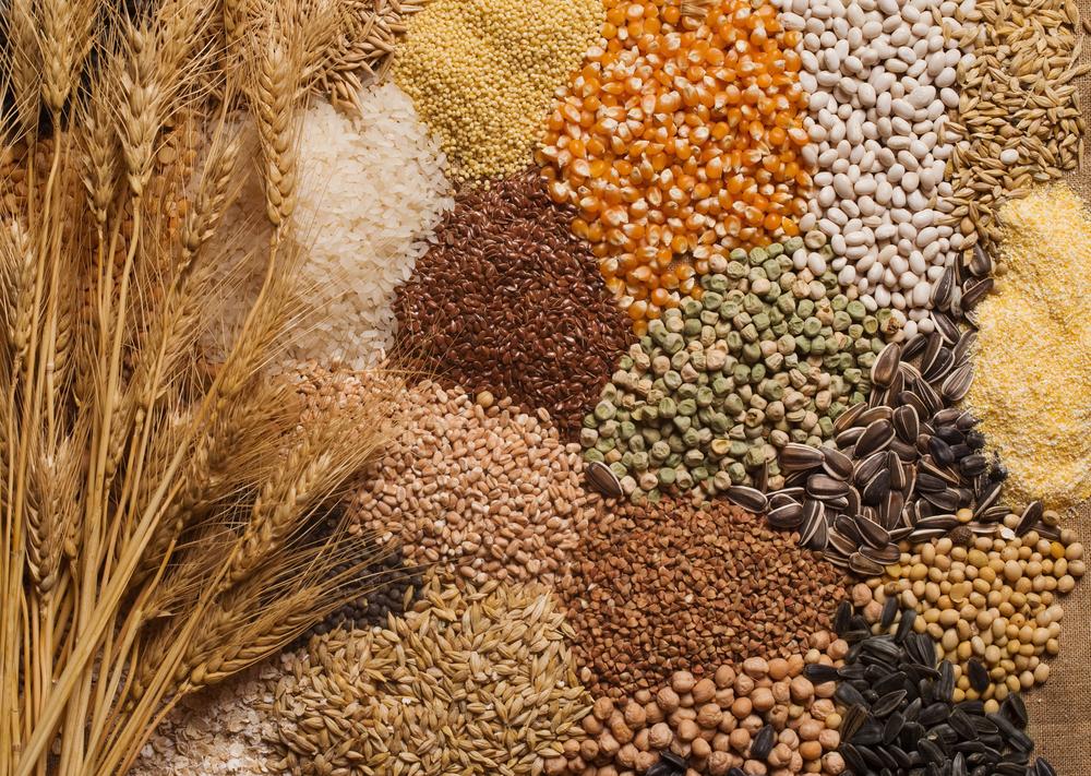 tam tahılların faydaları