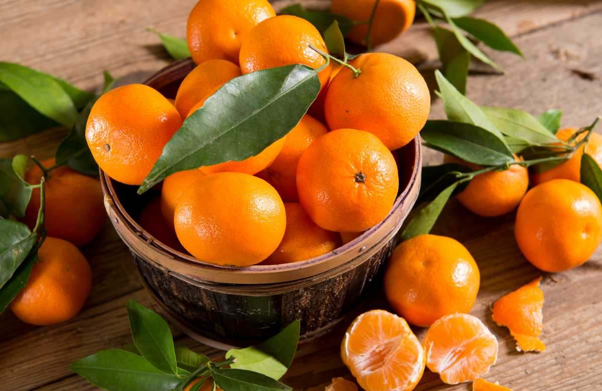 mandalina faydaları